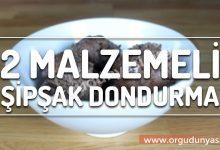 Photo of 2 Malzemeli Kakaolu Dondurma Tarifi